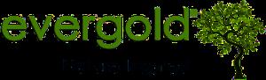 Evergold | Ecologia e Sustentabilidade – Madeiras – Mobiliário Urbano – Indústria – DendroLight